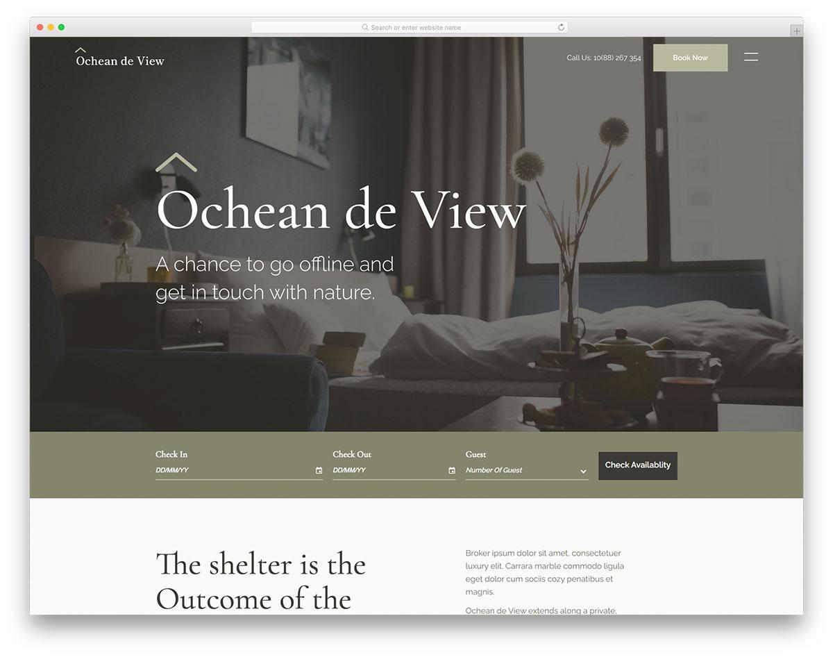 Ocheandeview